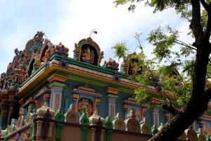 temple-elephant-pondicherry