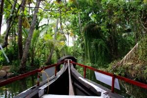 croisière-bateau-kelala-backwaters-alleppey