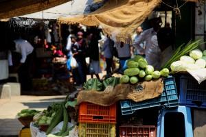 legumes-marche-mysore