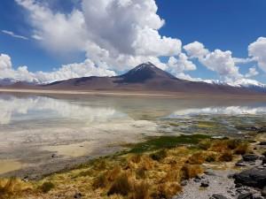 laguna-blanca-bolivie