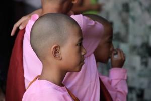 fillette-moine-birmane