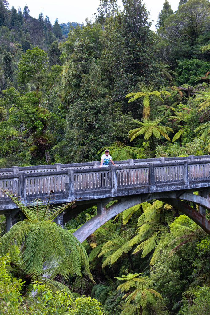 bridge-to-nowhere-nz