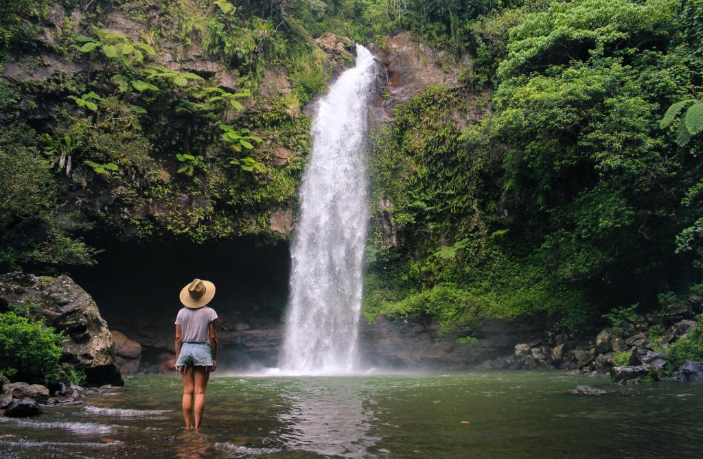 cascade-taveuni-ile-jardin